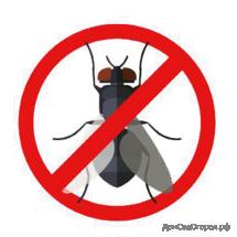От бытовых насекомых