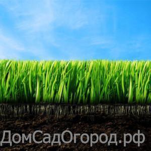 Травосмеси Семяна газонных трав