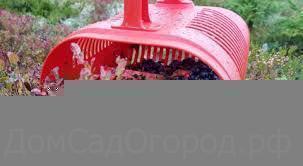 Сбоники ягод, плодов